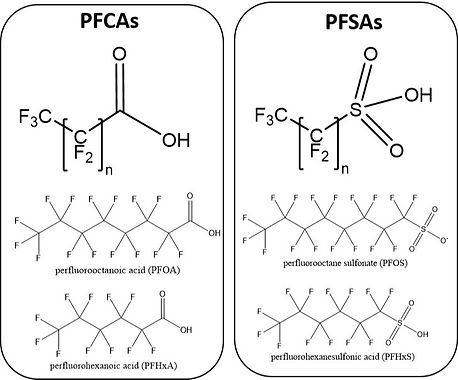 PFAS%2520Structures_edited_edited.jpg