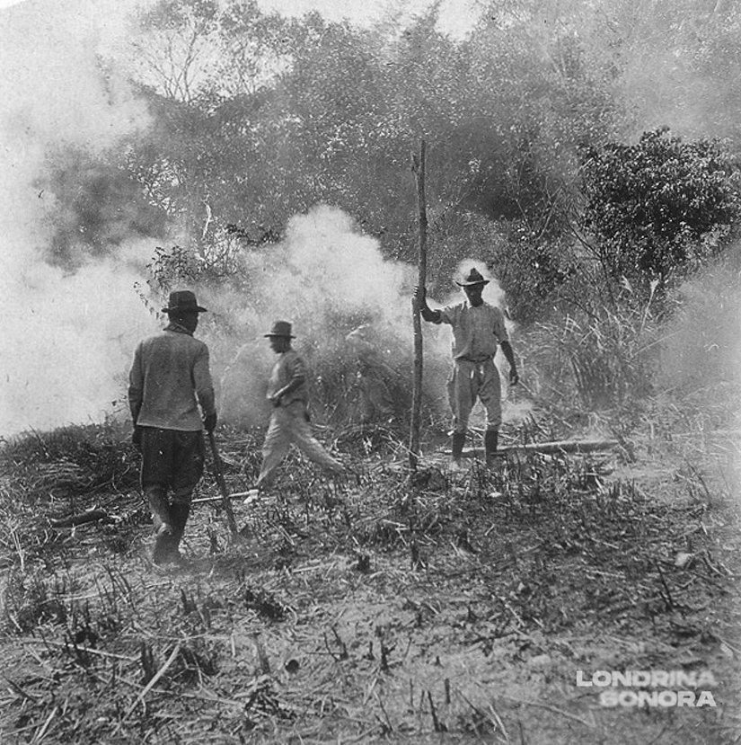 Três homens em terreno com fumaça ao fundo. Um deles segura um grande pedaço de madeira.