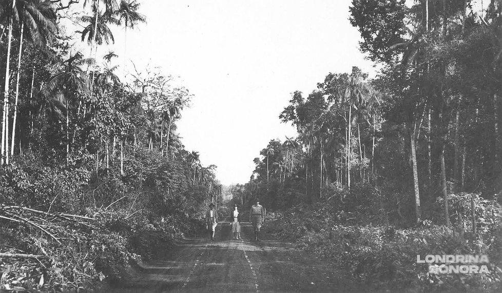 Três pessoas caminhando em direção à foto em uma via não asfaltada com árvores à esquerda e direita.