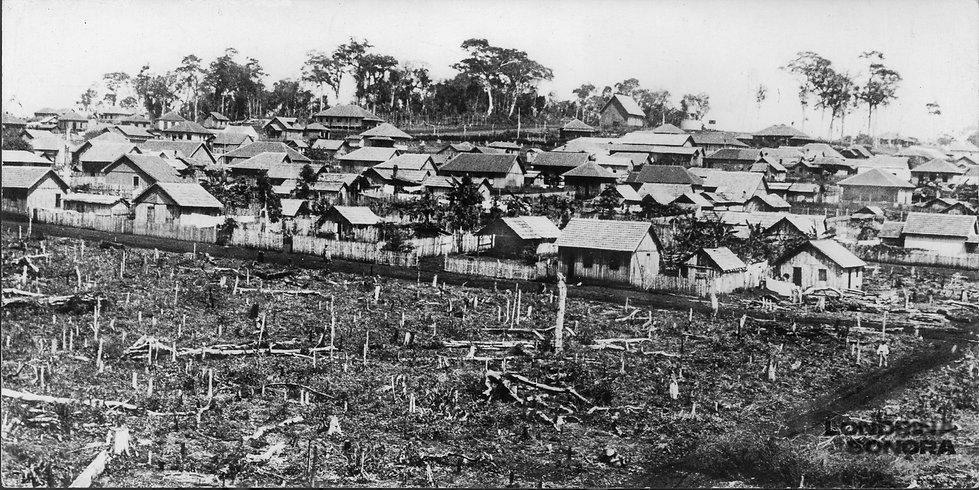 Em primeiro plano, terreno com muitas árvores cortadas. Ao fundo, algumas dezenas de casas.