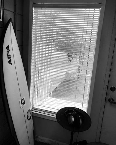 ViewFrom My Window by Allen Anderson