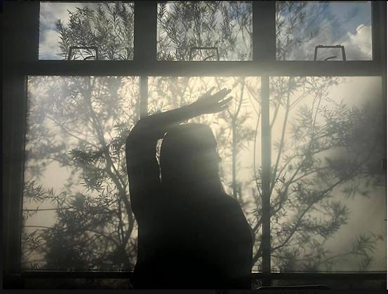 From My Window by Lynne Wallele Serwin