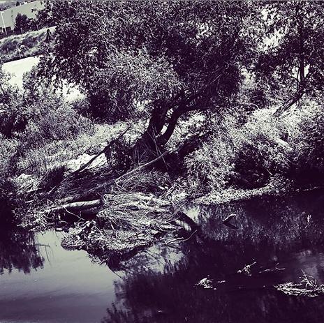 LA River Love by Michelene Cherie