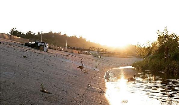 LA River Love by Freyja Bardell