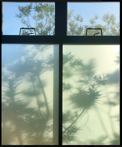 View from my window by Tracy Stone