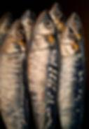 Tall Fish.jpg