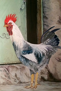 Mr Cockerel No 1 Pastel painting