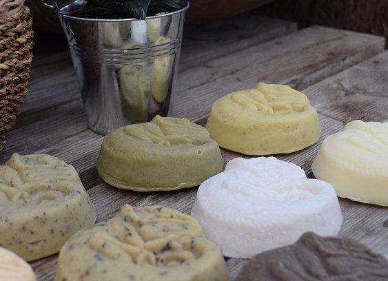 Chameleon Soap Bars