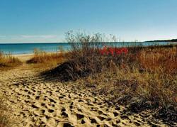 Public Beach Shorline