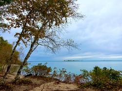 South Point (Site #4) Shoreline