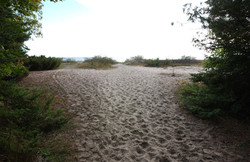 Public Beach Access