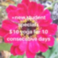 $10 for 10 consecutive days_edited.jpg
