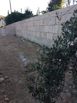 muro ricardo 4