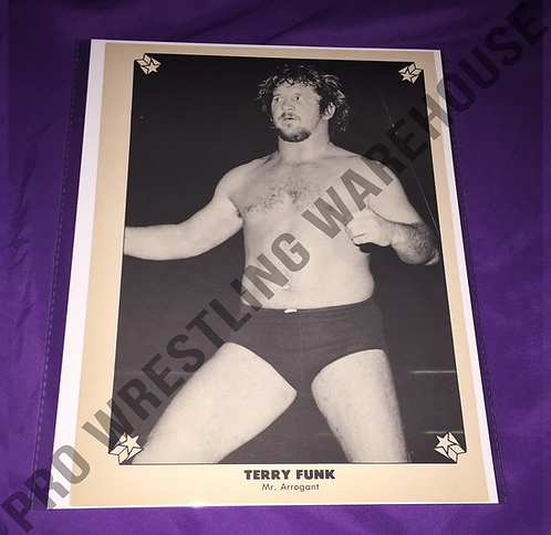 Terry Funk Vintage Wrestling Pin-Up