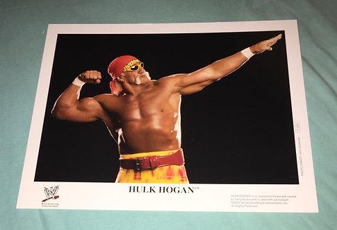 Hulk Hogan WWF/WWE Promo Photo P-1031 (2005)