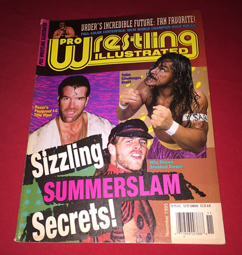 Pro Wrestling Illustrated November 1995