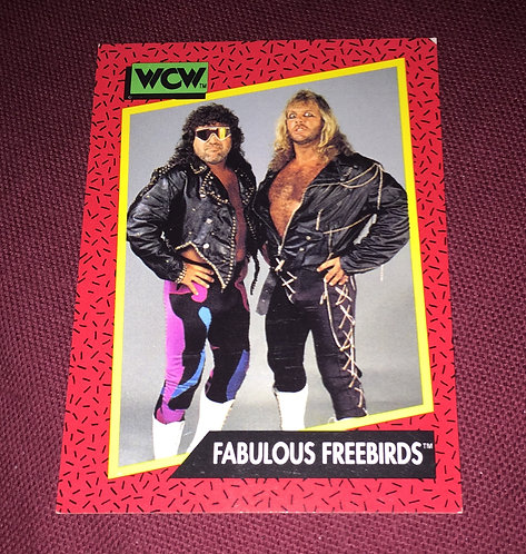 The Fabulous Freebirds Hayes & Garvin WCW Wrestling Trading Card