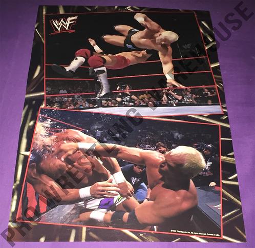 """Hardcore"" Bob Holly, WWF, WWE, Wrestling Poster"