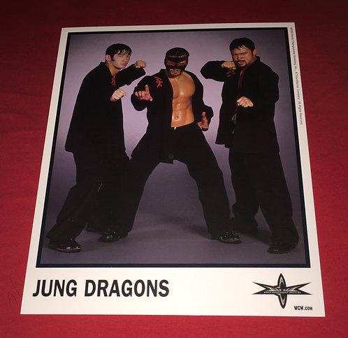 Jung Dragons 8x10 Promo Photo