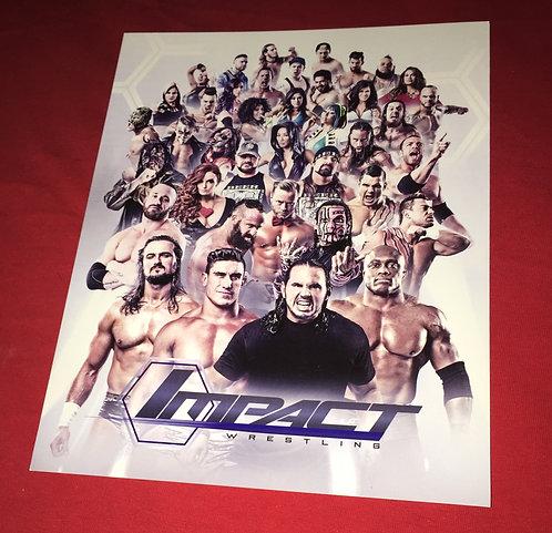 Impact Wrestling 8x10 Promo Photo