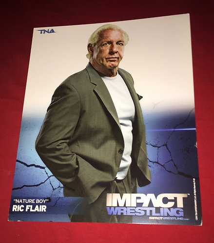 Ric Flair 8x10 Promo Photo