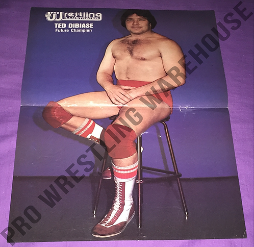 Ted DiBiase Poster - NWA, Mid-South, Georgia Wrestling,