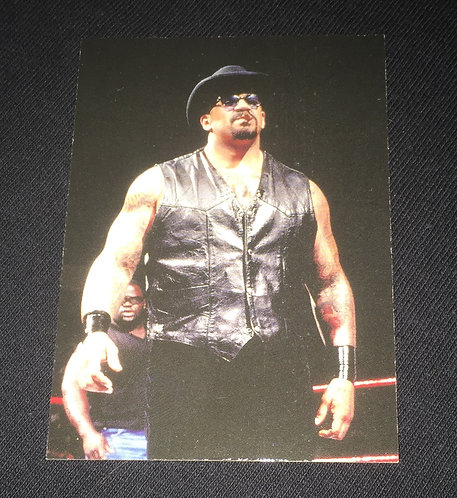 The Godfather WWE Wrestling Trading Card