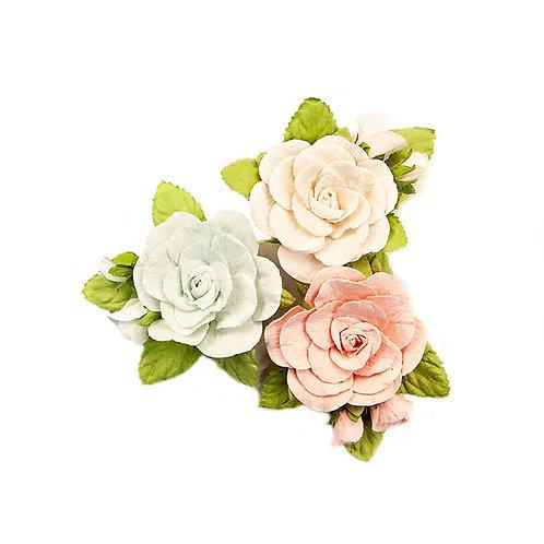 Poetic Rose - Sweet Roses