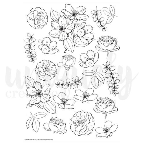 Winter Rose - A4 Watercolour sheet