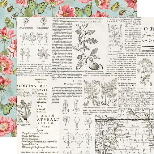 Vintage Botanicals- Beautiful Day