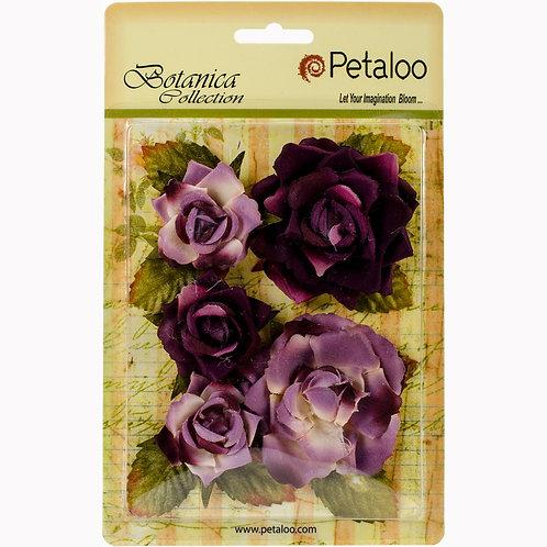 Garden Rose - Lavender/Purple flowers