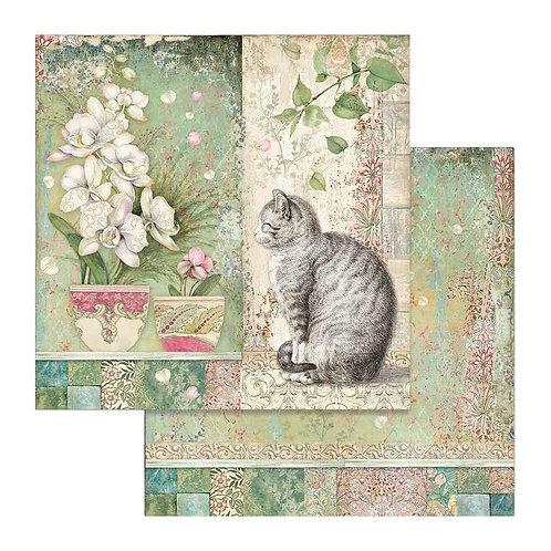 Cat & Vase, Orchids & Cats SBB752