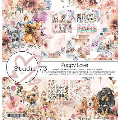 PL-Title-Page.jpg