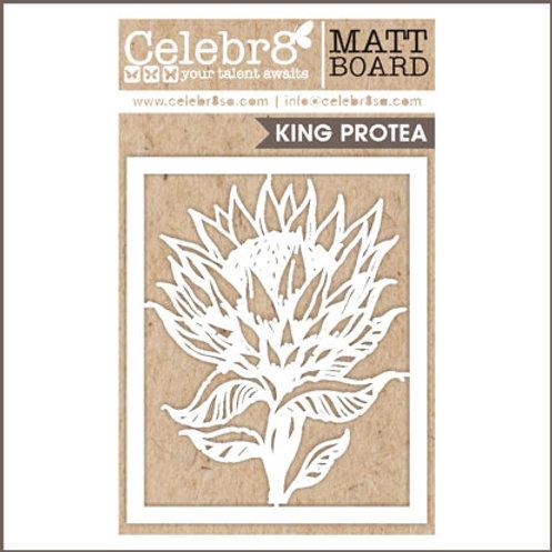 Celebr8 - King Protea