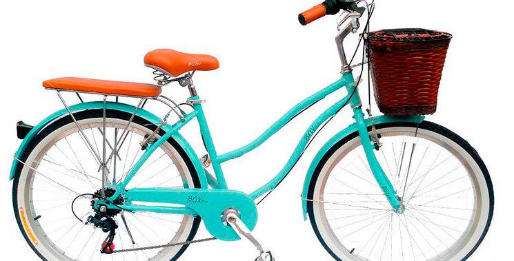 Bicicleta Vintage aro 26