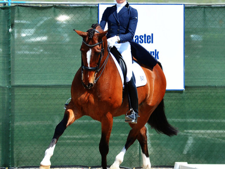 Olympian and USEF/US Dressage Young Horse Coach Christine Traurig Joins Peridot Equestrian Center