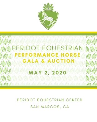 PERFORMANCE HORSE GALA AND AUCTION.png