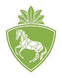 Peridot Sporthorses green 1.jpg