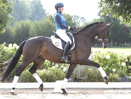 Peridot Equestrian Acquires Rosandrin EDI