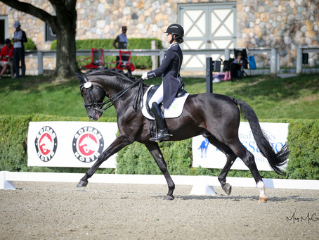 Katherine Mathews selected to the Discover Dressage USEF/USDF Emerging Athlete List