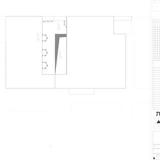 תכנית גגות.jpg