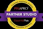 Partner-Studio-Outline.png