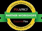 Partner Workshops-Outlines.png