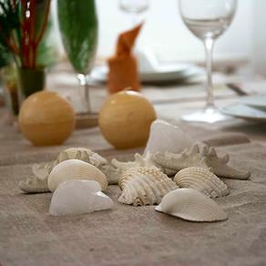夏の終わりのテーブル