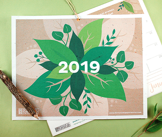 2019 Eco Tips Free Printable Calendar
