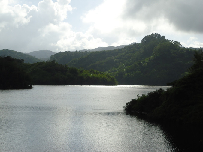 Lago Garzas, Adjuntas