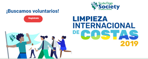 Registro Limpieza Internacional de Costas 2019, Puerto RIco