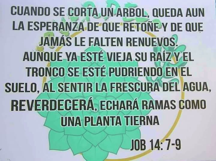 Letrero en el Jardín Reverdece, Lajas, PR