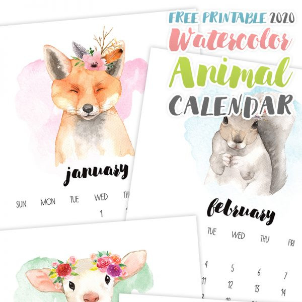 2020 Watercolor Animal Calendar