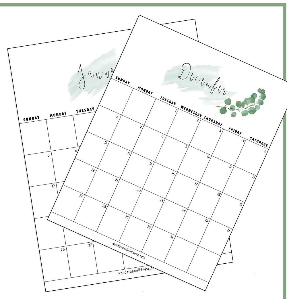 Eucalyptus Branch 2020 Printable Calendar